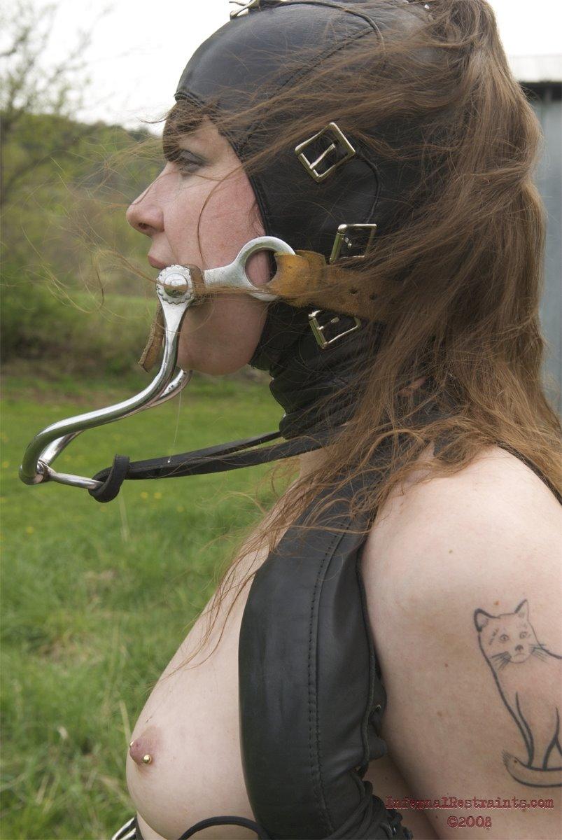 Bdsm Human Ponyplay Pics