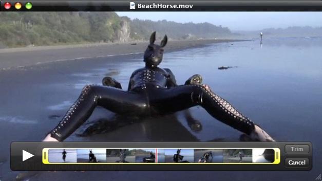 Beach Horse - KinkyPonyGirl Anna Rose